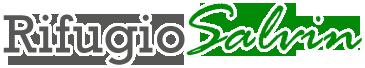 logo_salvin
